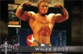 Flex Lewis - Chronicles Of The Welsh Dragon 1: The Beginning