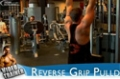 Your 12-Week Daily Video Trainer - Wednesday, Week 1: Back, Biceps & Calves Workout