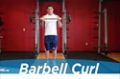 Exercise Guides: Barbell Curl, Male/Short Clip