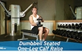 Exercise Guides: Dumbbell Seated One-Leg Calf Raise, Male/Short Clip