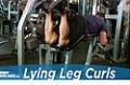 Exercise Guides: Lying Leg Curls, Male/Short Clip
