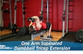Exercise Guides: One Arm Supinated Dumbbell Triceps Extension, Male/Short Clip