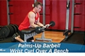 Exercise Guides: Palms-Up Barbell Wrist Curl Over A Bench, Male/Short Clip