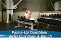 Exercise Guides: Palms-Up Dumbbell Wrist Curl Over A Bench, Male/Short Clip