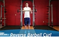 Exercise Guides: Reverse Barbell Curl, Male/Short Clip