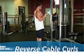 Exercise Guides: Reverse Cable Curls, Male/Short Clip