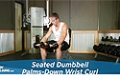 Exercise Guides: Seated Dumbbell Palms-Down Wrist Curl, Male/Short Clip