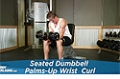 Exercise Guides: Seated Dumbbell Palms-Up Wrist Curl, Male/Short Clip