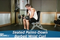 Exercise Guides: Seated Palms-Down Barbell Wrist Curl, Male/Short Clip