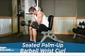 Exercise Guides: Seated Palm-Up Barbell Wrist Curl, Male/Short Clip