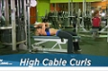 Exercise Guides: High Cable Curls, Male/Short Clip
