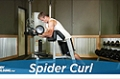 Exercise Guides: Spider Curl, Male/Short Clip
