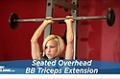Exercise Guides: Seated Overhead Barbell Triceps Extension, Male/Short Clip