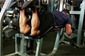 Exercise Guides: Lying Leg Curls, Male/Long Clip