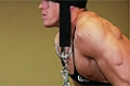 Exercise Guides: Standing Head Harness Neck Resistance, Male/Long Clip