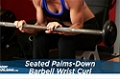 Exercise Guides: Seated Palms-Down Barbell Wrist Curl, Female/Short Clip