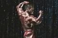 2009 Iron Man Pro: Top 10 Posing Routines - Hidetada Yamagishi