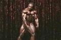 2009 Iron Man Pro: Top 10 Posing Routines - Silvio Samuel