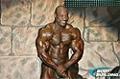 2010 Arnold Classic: Top 10 Men's Routines - Dexter Jackson