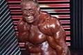 2007 Arnold Classic: Markus Ruhl