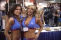 2006 Arnold Classic: The VPX Girls