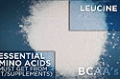 Ingredient Guides: BCAA