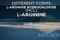 Ingredient Guides: Arginine