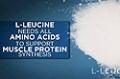 Ingredient Guides: L-Leucine