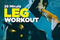 Video Article:  20 Minute Legs Workout