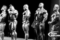 2010 Olympia Weekend: Kris Gethin's Backstage Pass Slideshow