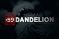 Site Guides: Dandelion