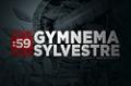 Site Guides: Gymnema Sylvestre