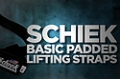 Accessory Guides: Schiek Basic Padded Lifitng Straps