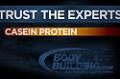 Expert Guides: Casein