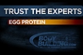 Expert Guides: Egg Protein