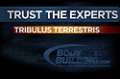 Expert Guides: Tribulus